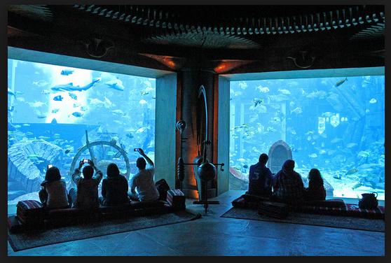 rekreasi bawah laut paling menakjubkan di dunia