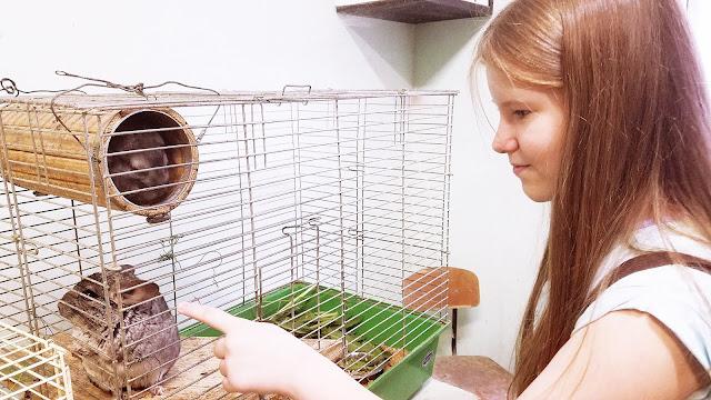 Самарский детский эколого-биологический центр: - А ты? Тоже не хочешь поговорить? Ну, давай с тобой познакомимся! Я - Настя!