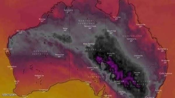 AUSTRALIA: la peor calor desde la segunda guerra mundial.