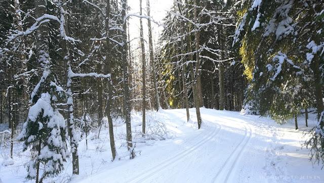 Nordic skiing Finland
