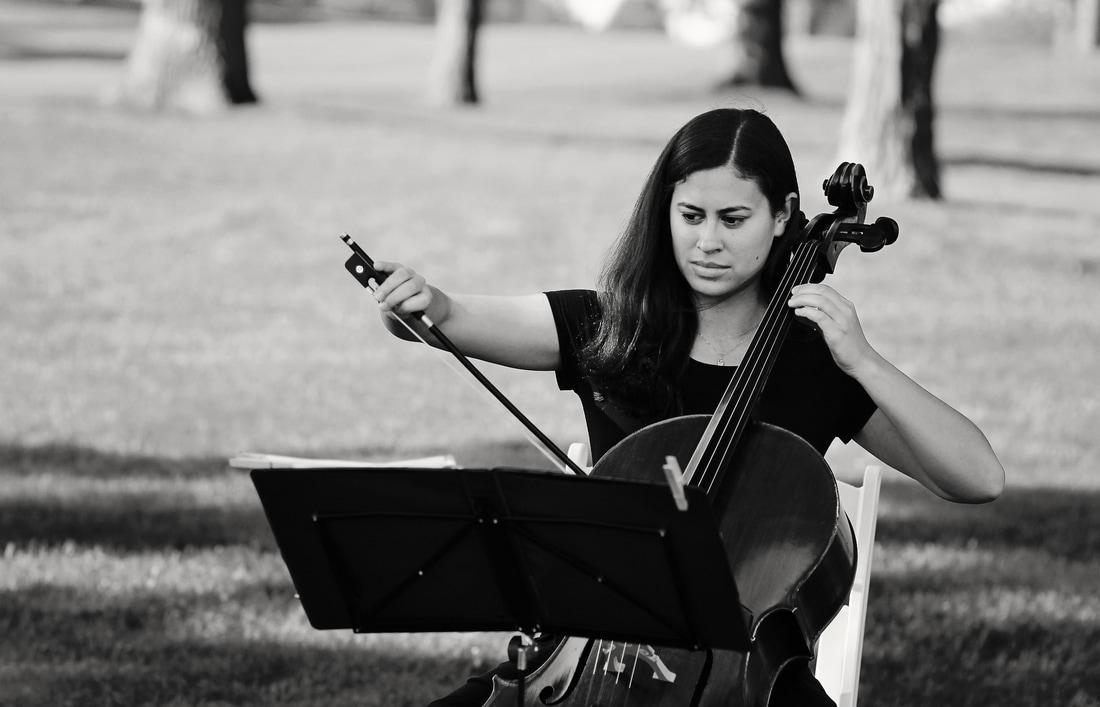 Chicago wedding rock cellist