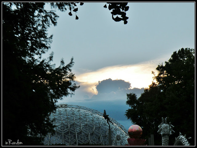 Evening at the Missouri Botanical Gardens