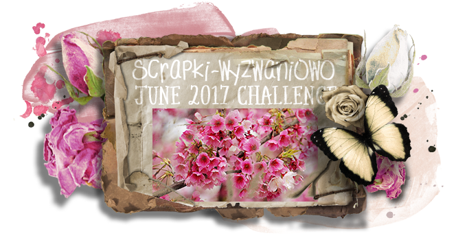 Wyzwanie do 30.06.2017 roku