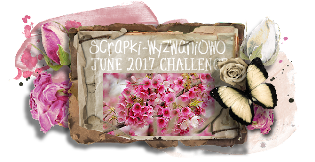 June 2017 challenge - See It In Pink
