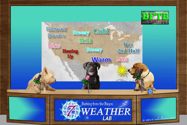 BFTB NETWoof Weather with our weather Lab