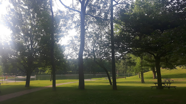 nature parc course à pied activité physique dehors
