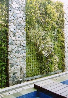 Tukang Taman Vertikal Surabaya | Vertical Garden 4