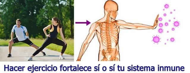 El ejercicio fortalece tu sistema de defensas y evita que te enfermes fácil