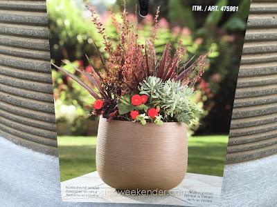 Ventura Concrete Planter - A neutral color to go with any decor