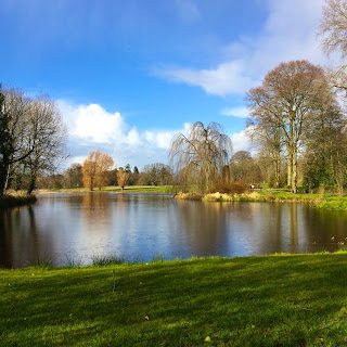 Birr Castle Lake View