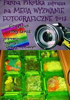 http://misiowyzakatek.blogspot.com/2013/12/szyk-wyzwanie-foto.html