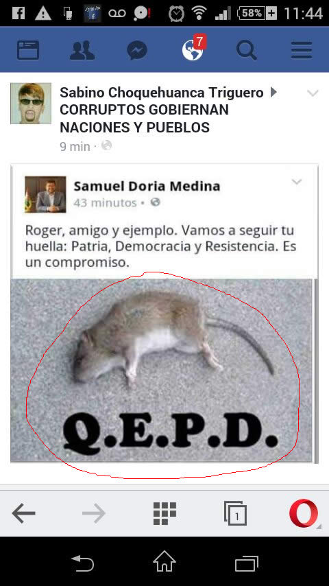 Fallese Roger Pinto