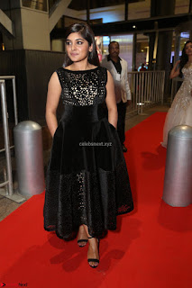 Niveda Thomas Black Sleeveless Cute Dress at 64th Jio Filmfare Awards South 2017 ~  Exclusive 101.JPG