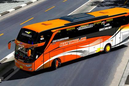 Skin ATJ Pack for Jetbus 3 OjePeJe