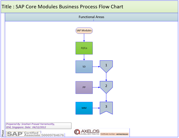 SAP MM, PM, PP SD, FI/CO Functional Processes