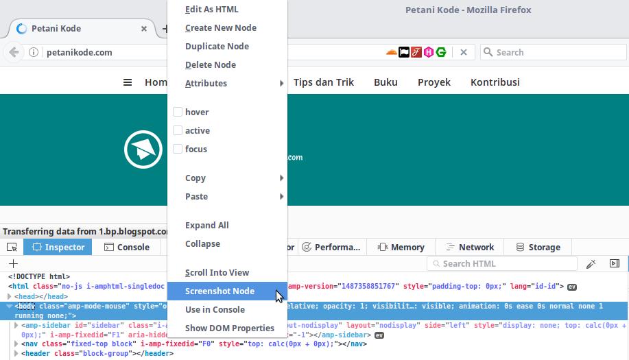 Mengambil Screenshot web dengan inspect element firefox
