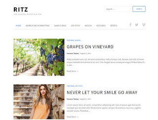 Theme Wordpress Ritz Lite Responsive Free