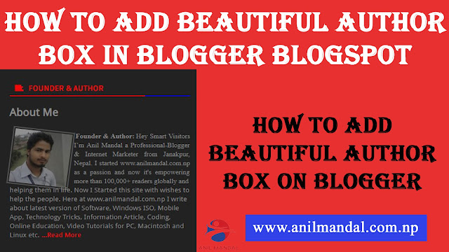 How To Add Beautiful Author Box In Blogger Blogspot