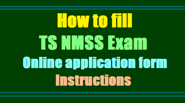 How to fill TS NMSS Exam Online application form, Instructions