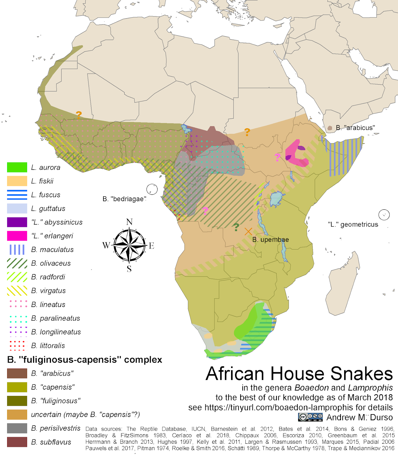 Life Is Short But Snakes Are Long Snake Skeleton Diagram Rattlesnake Skull By Map Of The Species Currently In Boaedon Lamprophis