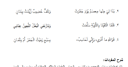 عمر بن ابي ربيعة في الغزل الاباحي