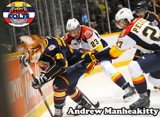 Image result for very barrie colts cat heads