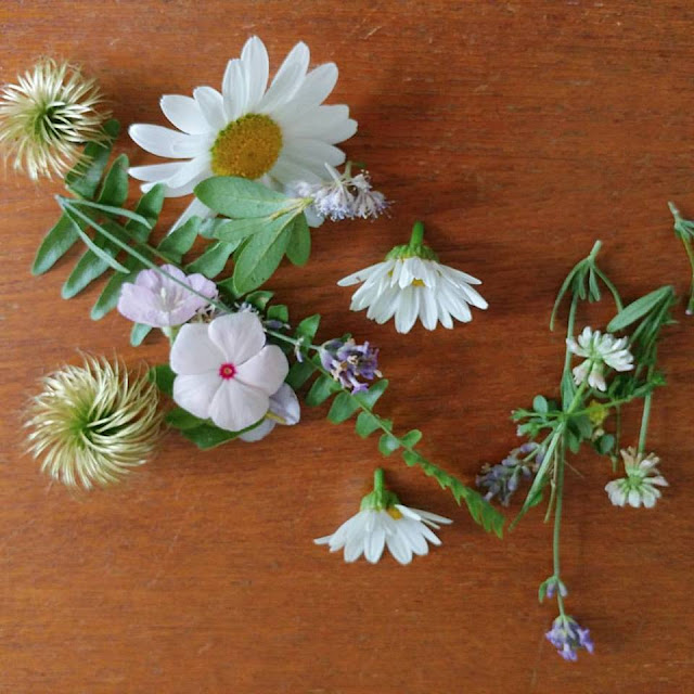 fresh picked flowers, herbs and leaves