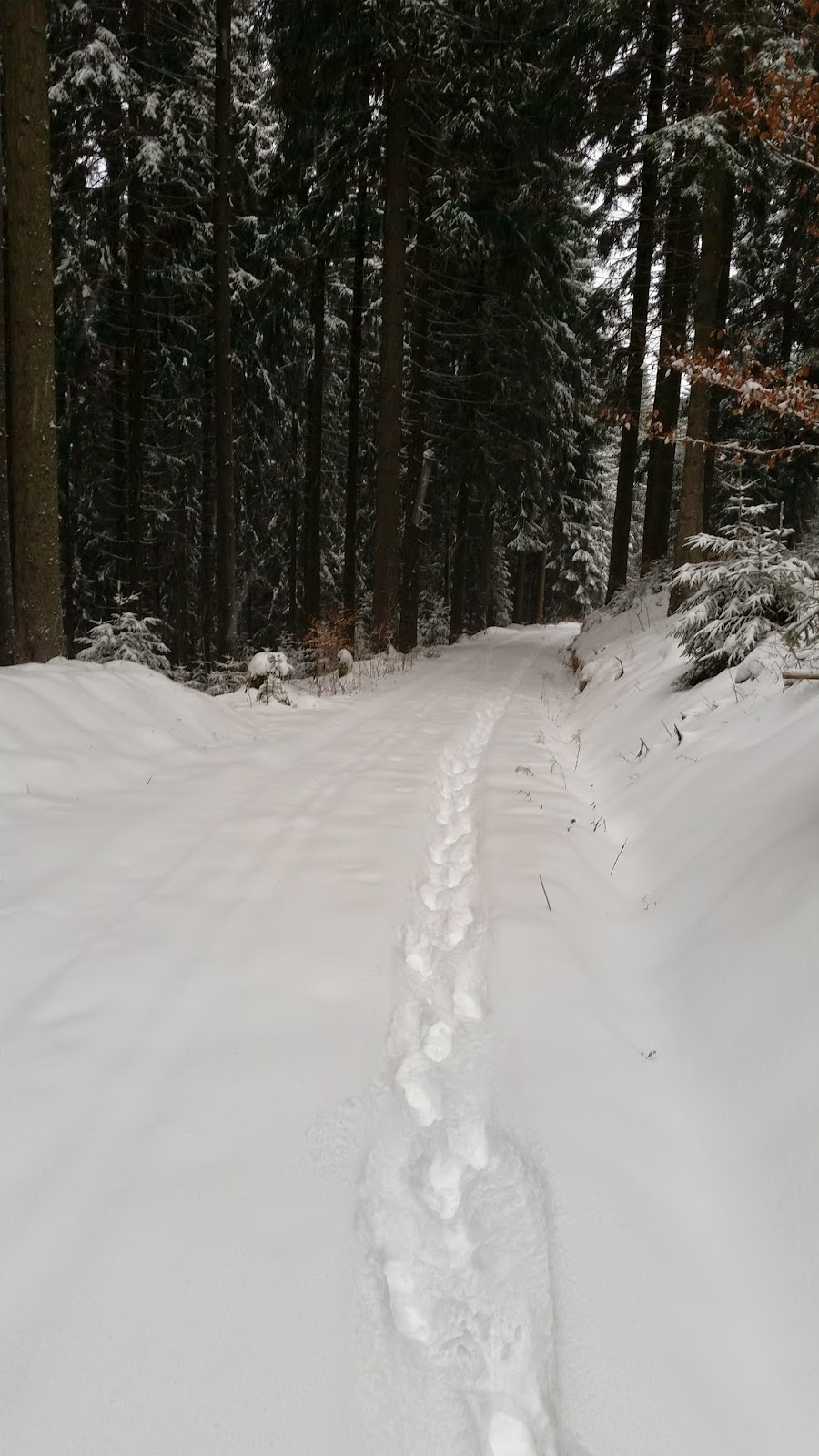 Laufen im tiefen Schnee
