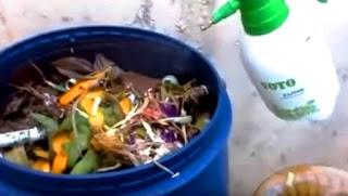 Sampah dan Pengelolaan Sampah
