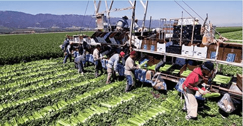 General Farm Worker Needed In Canada - LinJob