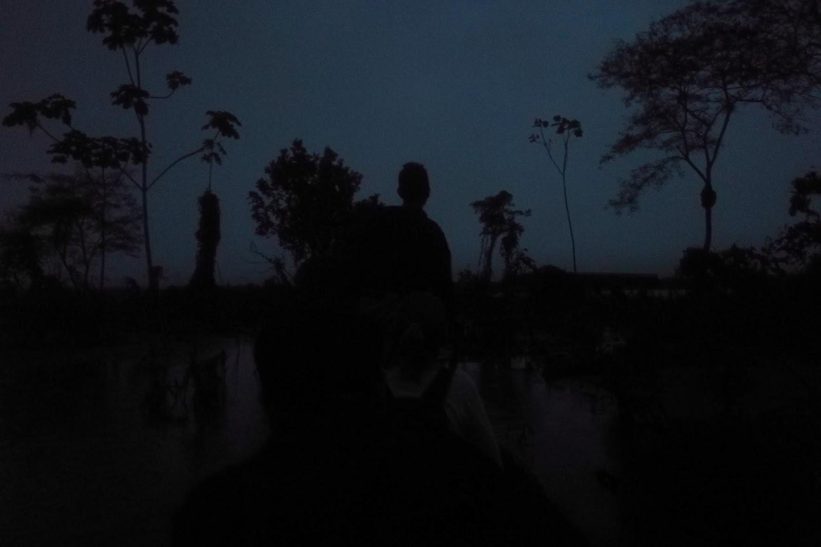 Madrugada en la Selva