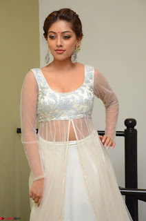 Anu Emmanuel in a Transparent White Choli Cream Ghagra Stunning Pics 120.JPG