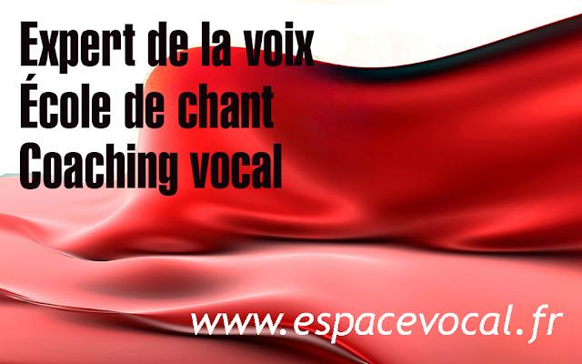 Expert de la voix