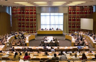 UN Economic and Social Council (ECOSOC) Session, 2020
