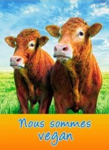 Vaches: Nous sommes vegan