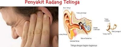 Penyebab Dan Pencegahan Penyakit Radang Anak Telinga
