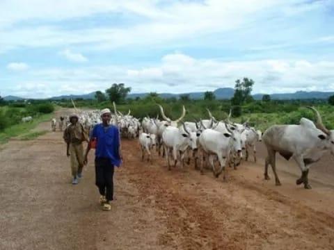 fulani latest attacks in benue delta state