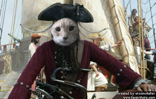 Image result for #nipclub pirate