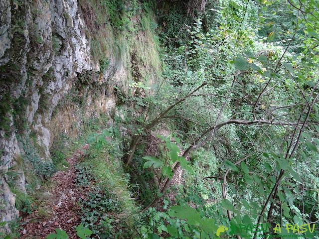 Canal de Reñinuevo: Sendero entre roca