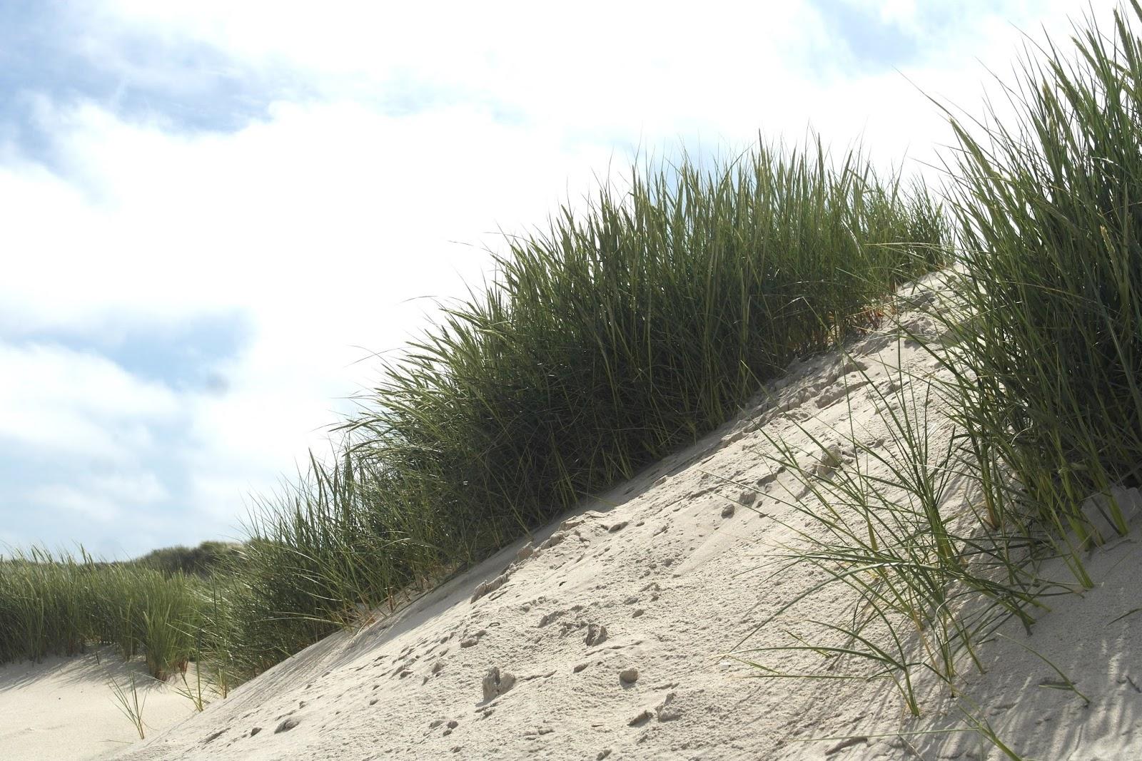 Hvide Sande Denmark