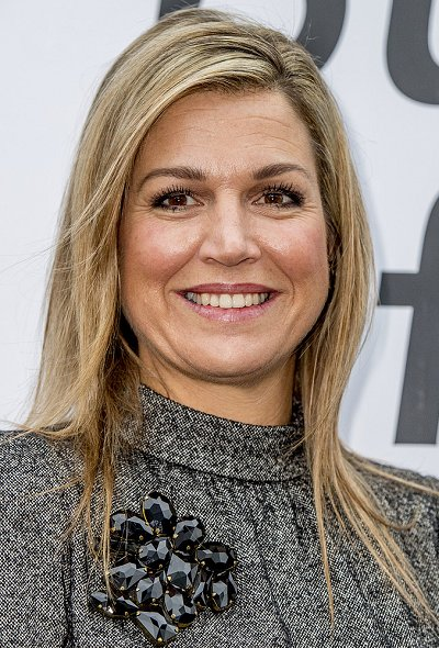Queen Maxima wore Dolce and Gabbana Microprint Wool Sheath Dress, Christian Louboutin pumps