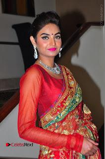 Model Sharon Fernandes Stills in Red Saree at Trendz Exhibition Launch  0015.JPG