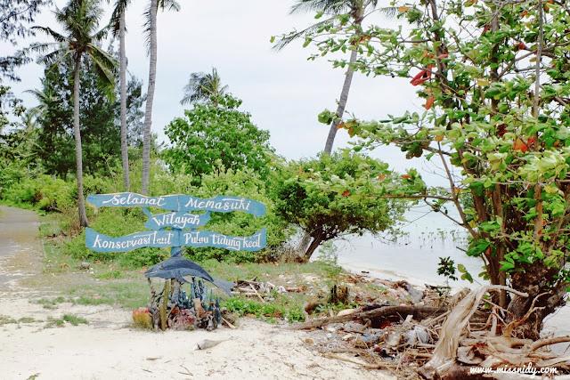 konservasi mangrove di pulau tidung kecil