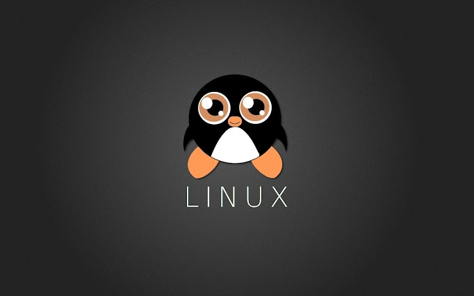Sistema Operativo Gnu/linux libro