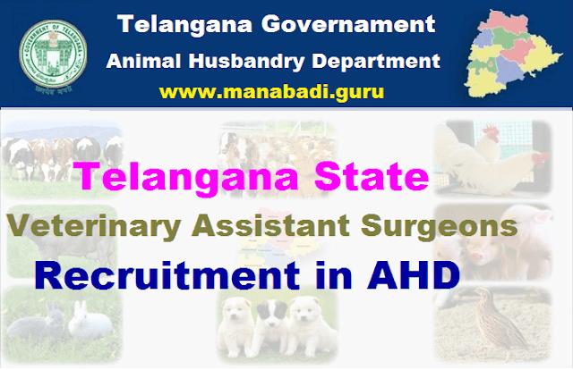 TG State, Telangana Animal Husbandry Department, TSPSC Recruitments, Veterinary Assistant Surgeon Posts, TS Jobs