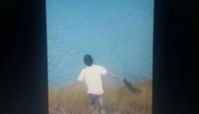Sadis Rekaman Anjing yang di Jadikan Santapan Buaya