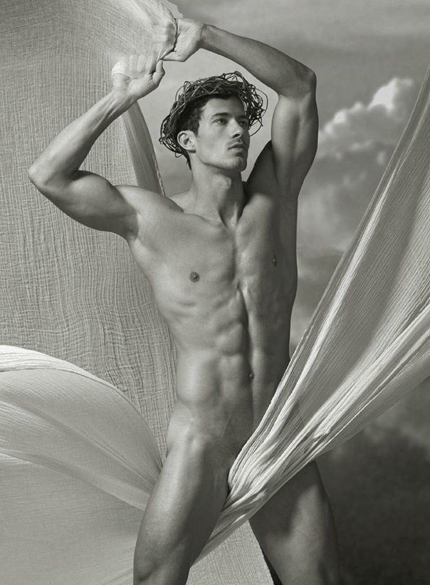 The male nude by david leddick the beauty of the male form