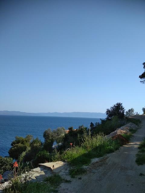 Bay Torac, Island Hvar- Would You Like To Vacation Here?
