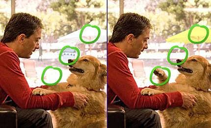 لعبة اكتشاف الاختلاف فى الصور فلاش difference in Photo