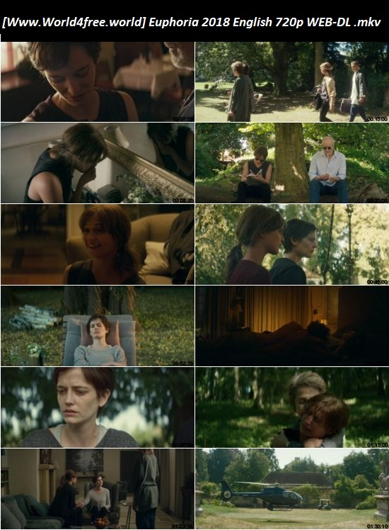 Screen Shoot of Euphoria 2017 Full English Movie 720p WEB-DL 800MB